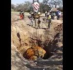 Τεράστιος Μετεωρίτης τραβιέται από τρύπα στην Αργεντινή