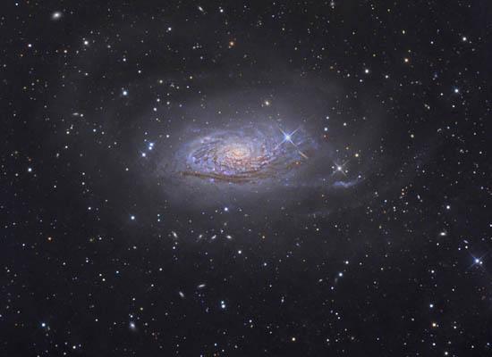 Ο Γαλαξίας Ηλίανθος