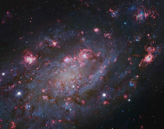 Ο NGC 2403 στην Καμηλοπάρδαλη