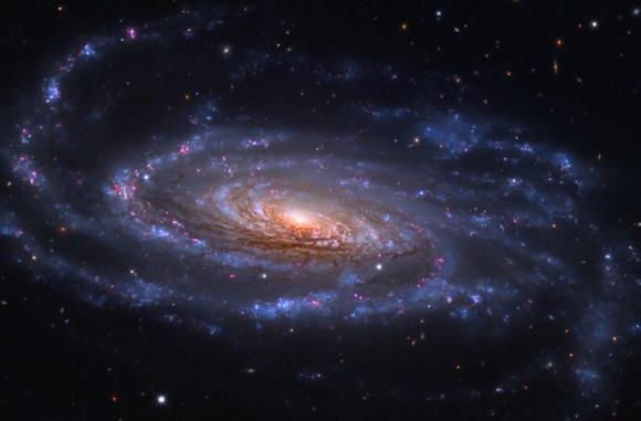 Σπειροειδής Γαλαξίας NGC 5033