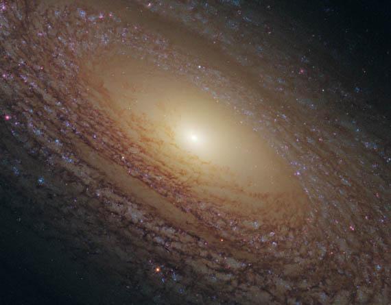 Κοντινή Λήψη του NGC 2841